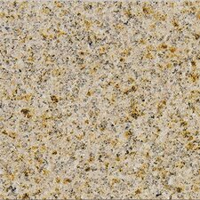 "18"" x 18"" Granite Field Tile in Giallo Fantasia"
