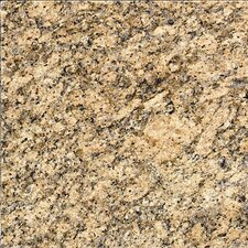 "18"" x 18"" Granite Field Tile in Giallo Veneziano"
