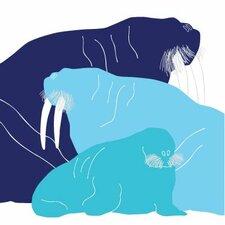 Animals Walrus Stretched Canvas Art