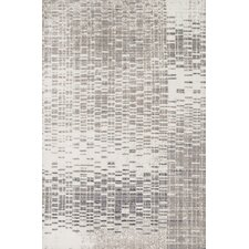 Discover Ivory & Light Gray Area Rug
