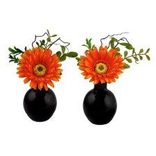 Gerbera Daisy Arrangement in Glass Vase (Set of 2)