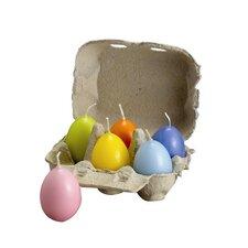 Pastel Egg Candle (Set of 12)