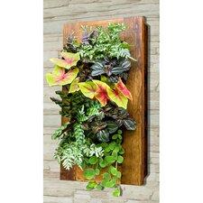 Novelty Wall Planter