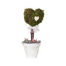 Preserved Moss Heart Topiary