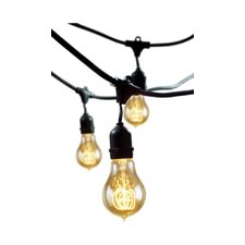Rachael Incandescent 15 Light Outdoor String Light