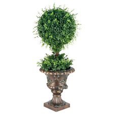 Tea Leaf Ball Topiary in Urn