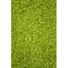Sara Lime Green Shag Area Rug
