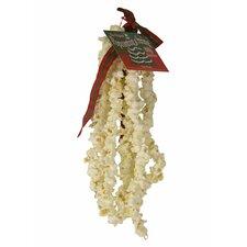 Strings of Popcorn