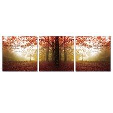 Autumn Leaves 3 Piece Photographic Print Set