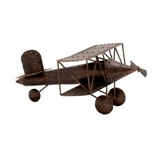 Beautiful and Prized Metal Large Model Plane