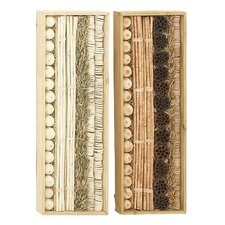2 Piece Exceptional Dried Wall Décor Set