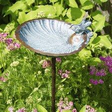Scallop Shell Bird Bath and Feeder