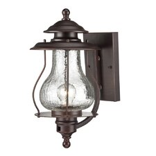 Blue Ridge 1 Light Outdoor Wall Lantern