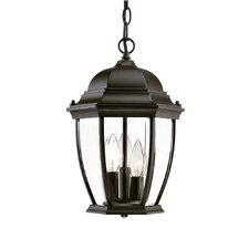 Wexford 3 Light Outdoor Hanging Lantern