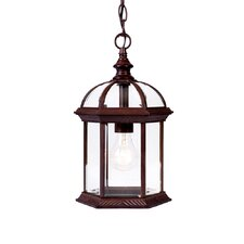 Dover 1 Light Outdoor Hanging Lantern