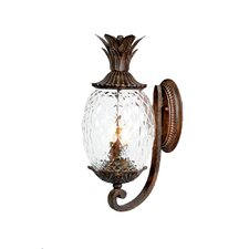 Lanai 2 Light Outdoor Wall Lantern