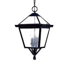 Charleston 3 Light Outdoor Hanging Lantern