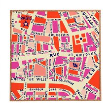 Paris Map by Holli Zollinger Framed Graphic Art