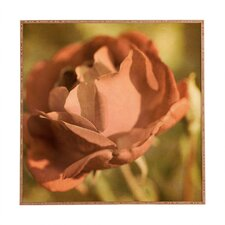 A Rose by Barbara Sherman Framed Photographic Print