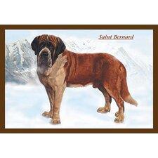 'Smooth Coated Saint Bernard' Painting Print