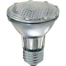 38W 120-Volt (2800K) Halogen Light Bulb