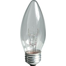 60W 120-Volt (2600K) Light Bulb (Pack of 2)
