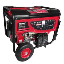 7500 Watt CARB Portable Gasoline Generator