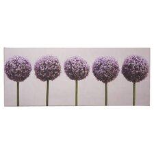 Fotodruck Row of Alliums auf Leinwand