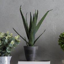 Kunstpflanze Aloe Vera
