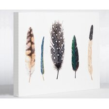 Feathers 1 by Ana Victoria Calderon Graphic Art on Wrapped Canvas