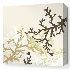 Spa Coral Stretched Graphic Art on Wrapped Canvas