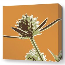 Botanicals Propeller Stretched Graphic Art on Wrapped Canvas in Orange