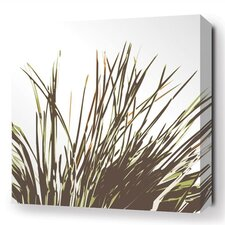 Botanicals Thatch Stretched Graphic Art on Wrapped Canvas in Brown