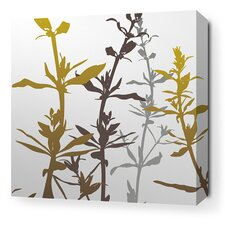 Morning Glory Wildflower Stretched Graphic Art on Wrapped Canvas in Silver and Olive