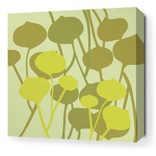 Aequorea Seedling Graphic Art on Wrapped Canvas in Pale Green
