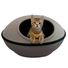 Cat Mod Dream Pod