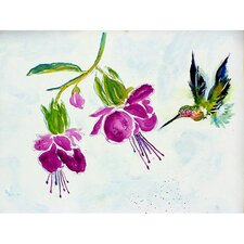 'Hummingbird' by Betsy Drake Painting Print on Canvas