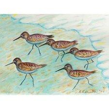 Coastal Sandpipers Painting Print