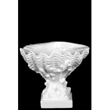 Ceramic Open Valve Clam Seashell on Coral Pedestal Gloss White