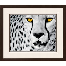 'White Cheetah' by Rocco Sette Framed Graphic Art