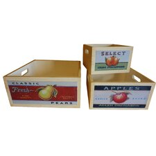 3 Piece Assorted Retro Fruit Wooden Crate Set (Set of 3)