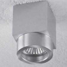 Alume 1 Light Ceiling Accent Light