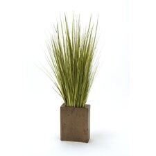Mix Grass in Rectangular Decorative Vase