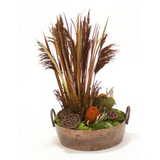 Natural Plumes, Blade Grass and Protea in Round Planter