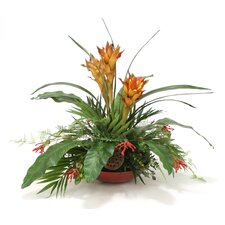 Tropical Mix of Bromeliads, Guzmania and Palm in Heritage Bowl