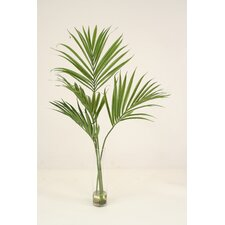 Waterlook Kentia Palm Floor Plant in Vase
