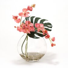 Mauve Orchid and Split Philo Leaf in Cut Glass Disk Vase