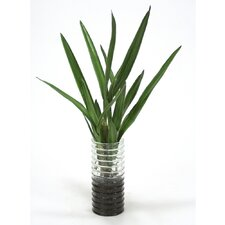 Waterlook Orchid Leaves Floor Plant in Vase