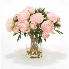 Waterlook Pink Peonies in Glass Cylinder Vase