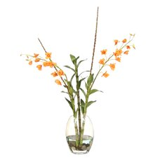 Waterlook Dendrobium Orchids, Twigs in Elliptical Glass Vase